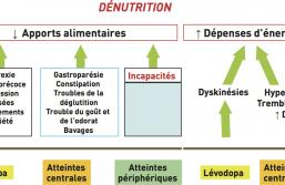 Maladie de Parkinson : prise en charge de la dénutrition et de l'excès de poids
