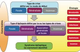 TOP 5: épilepsie - « Pour soigner, il vaut mieux essayer de comprendre la ou les causes et les conséquences de la maladie épileptique »