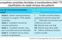 Actualités thérapeutiques dans la prise en charge de l'amylose hATTR