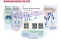 14e Réunion du groupe PEPS - Marqueurs biologiques de sclérose en plaques