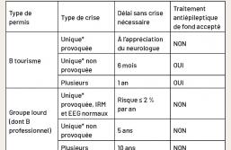 Les conséquences médico-sociales des épilepsies - Le neurologue : l'un des acteurs clé du parcours socio-professionnel du patient souffrant d'épilepsie
