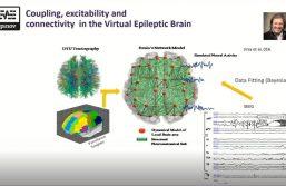 Inspiration : les modèles de masse neuronale et le concept de cerveau virtuel